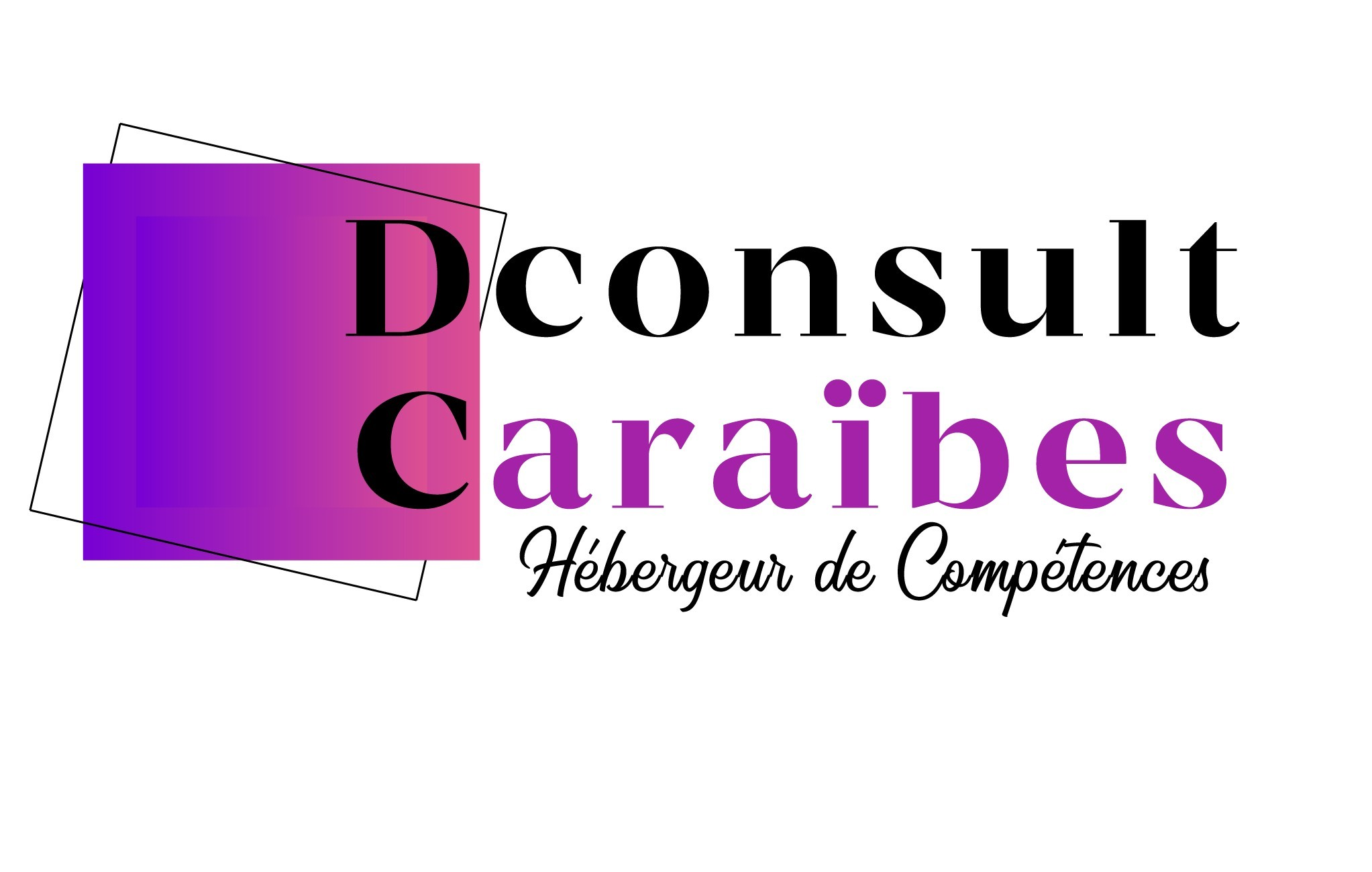 DConsult Caraïbes